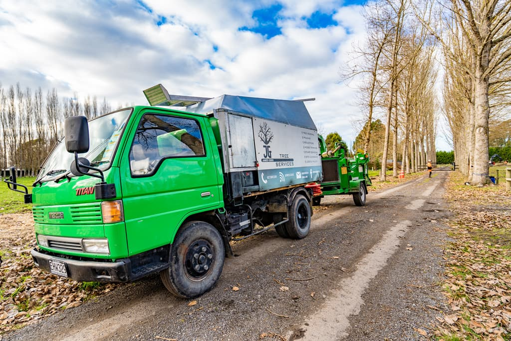 Tree pruning and removal mulching service