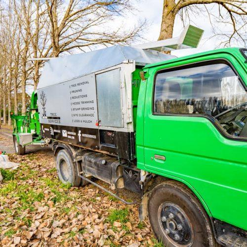 Tree removal mulching