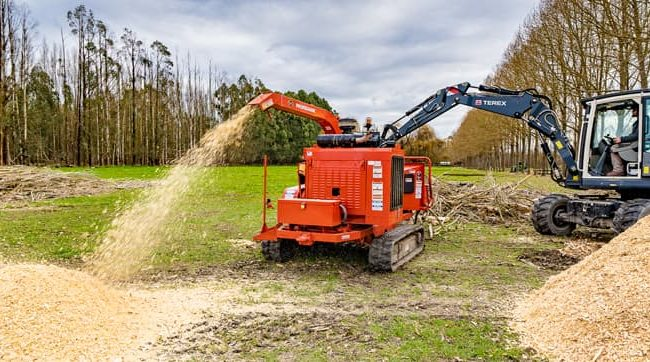 Using an excavator to mulch logs, Rangiora