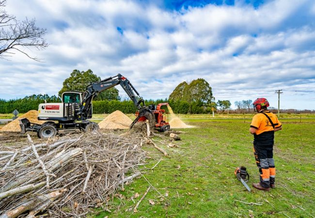 Tree mulching and felling