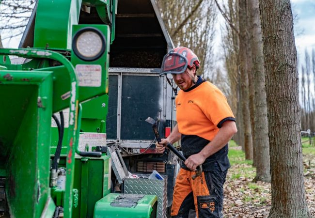 Getting the right tools for your tree services jobs