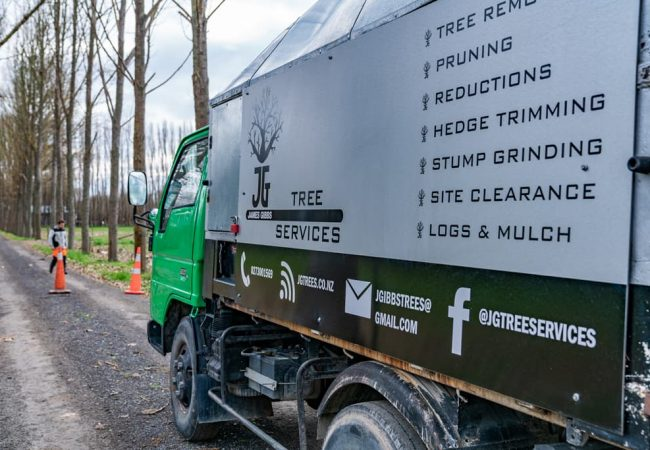 JG Trees, Site clearance, hedge trimming and more tree services