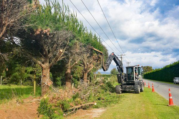 j_g_trees_planting_north_canterbury_hedge_trimming_small_1-min