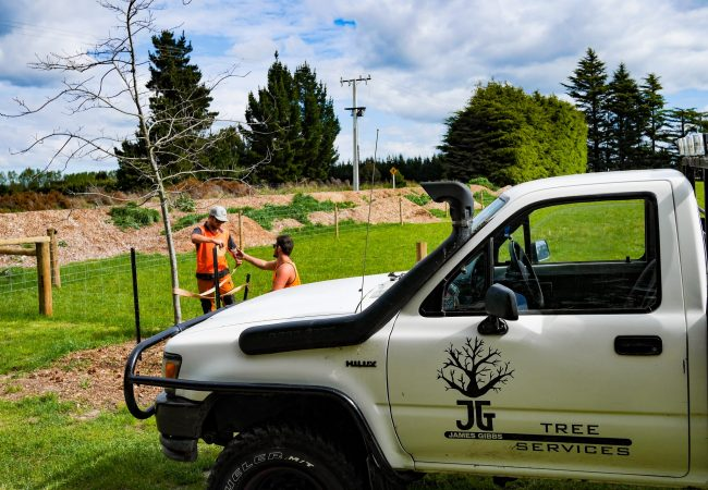 j_g_trees_planting_north_canterbury_small_5-min